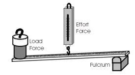 Third class lever