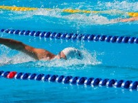 A competitive swimmer swims the freestyle