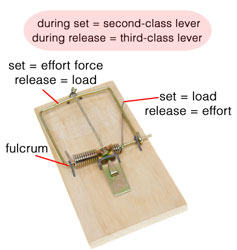 the levers of a mousetrap