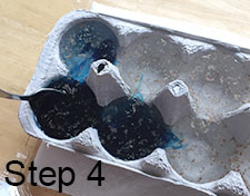 pour food coloring into water in egg carton
