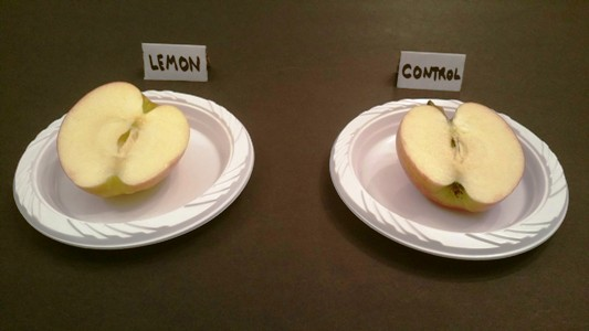 How To Stop Rust >> Keep Apples Fresh | Stop Apples From Browning Using Lemon ...